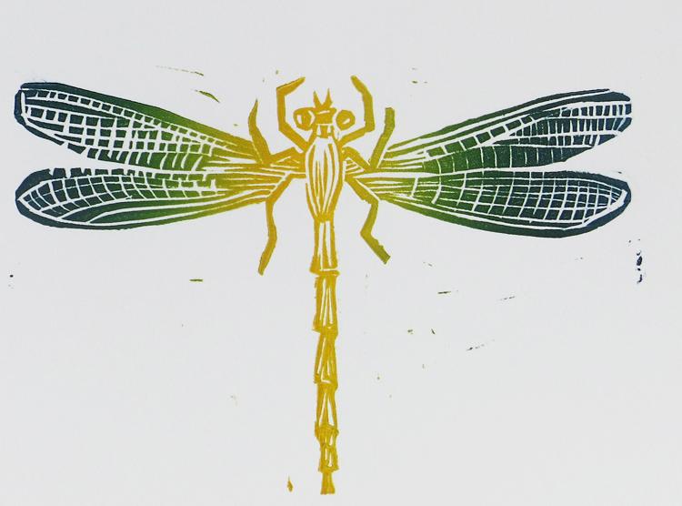 Damsel_fly