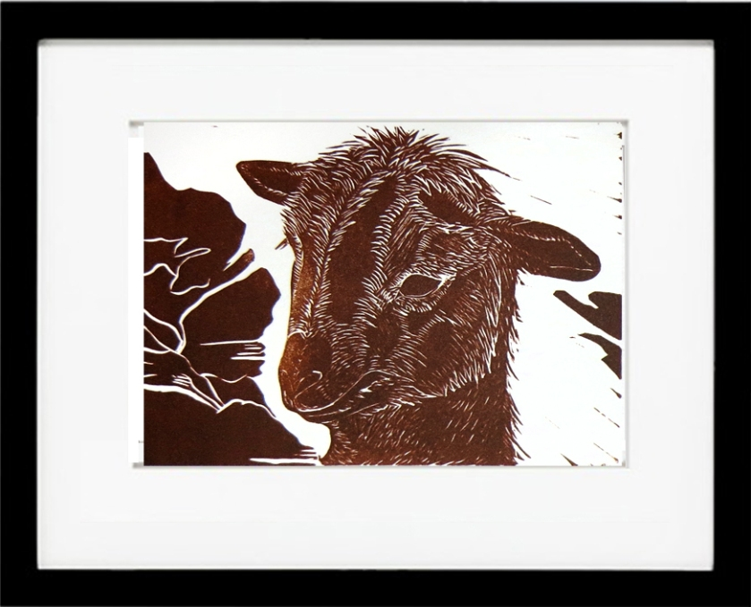 Framed Brown Goat