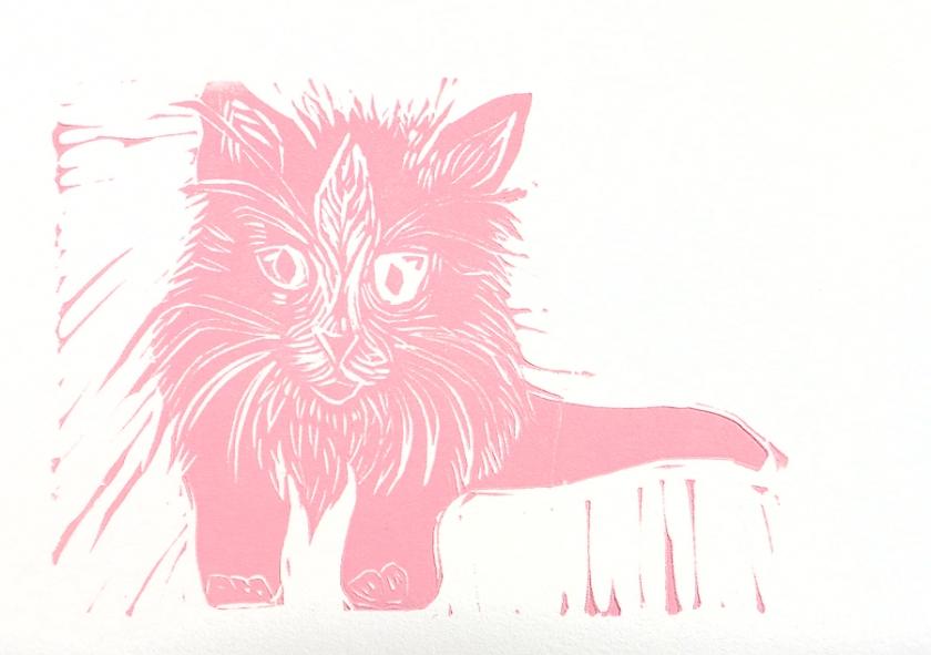 pink_kitten