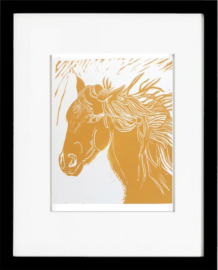 palamino, Michael Martin Murphey, wild horse, horse head