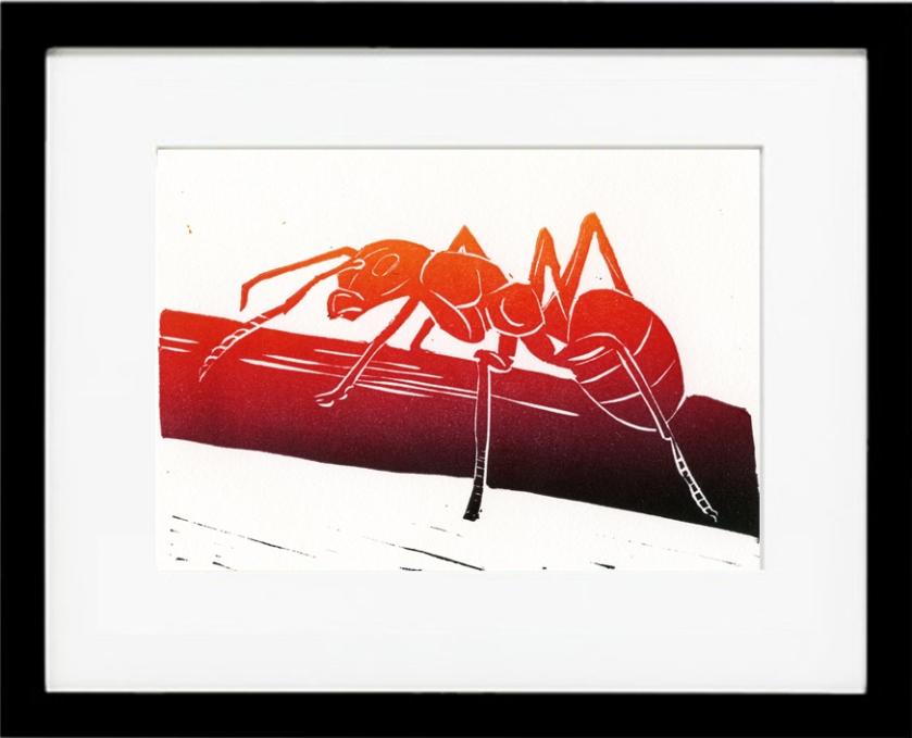 framed_ant