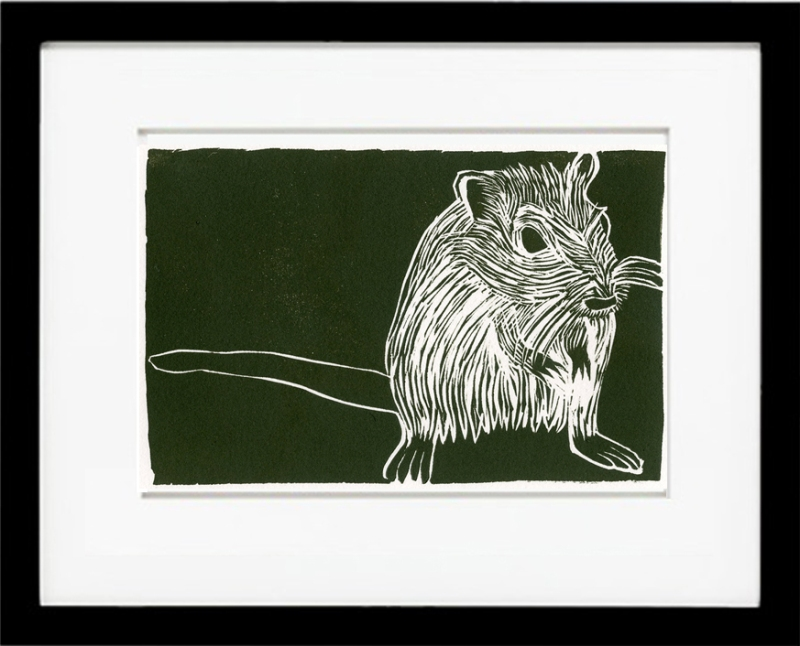 Pregnant Gerbil on Olive Green background