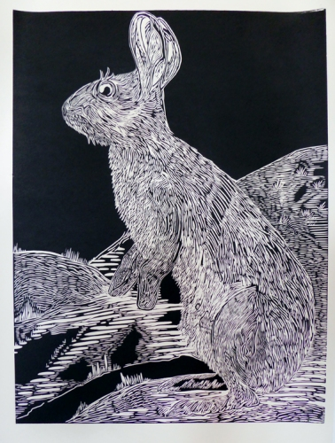 Snowshoe  Hare linocut in progress