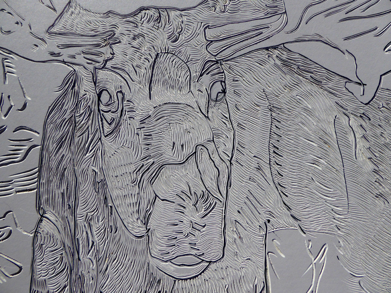 "Detail of 24"" x 18"" Moose Linocut"