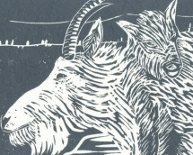Detail of linocut Mountain Goat