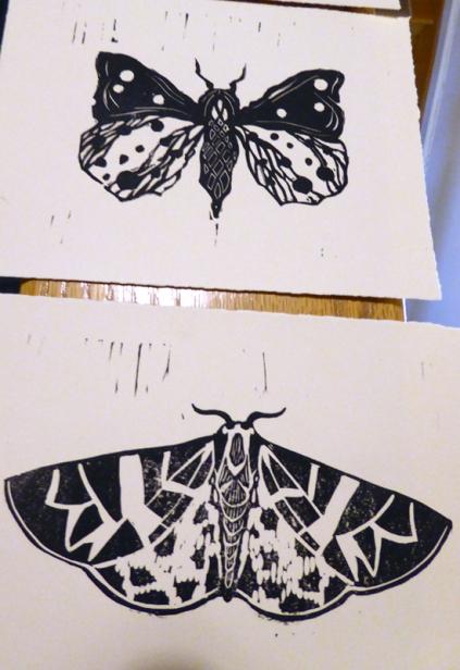 2_moth_migration_printsocial_lorenz