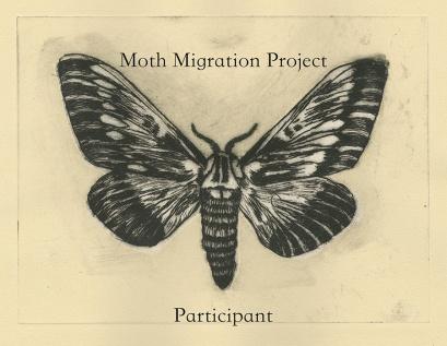 Moth_Migration_Participant