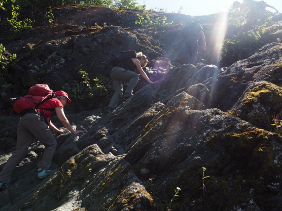 Hike to the Mendenhall Glacier