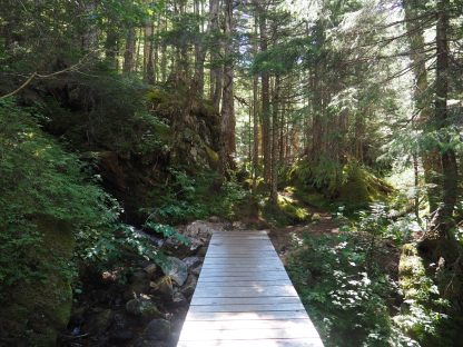 Chilkoot Trail water Crossing