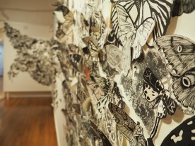 Moth Migration Project at Gympie Regional Gallery, Australia